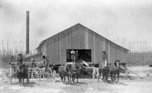 La scierie Napoléon Paquette en 1914. SHA - Fonds Pierre Trudelle
